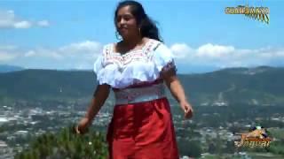 Bailando Feliz con estilo único con marimba GuateMaya MELODÍA ANCESTRAL