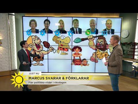 """Marcus: """"Det går vilt till i riksdagen"""" - Nyhetsmorgon (TV4)"""