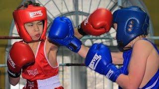 видео Федерация бокса Алтайского края