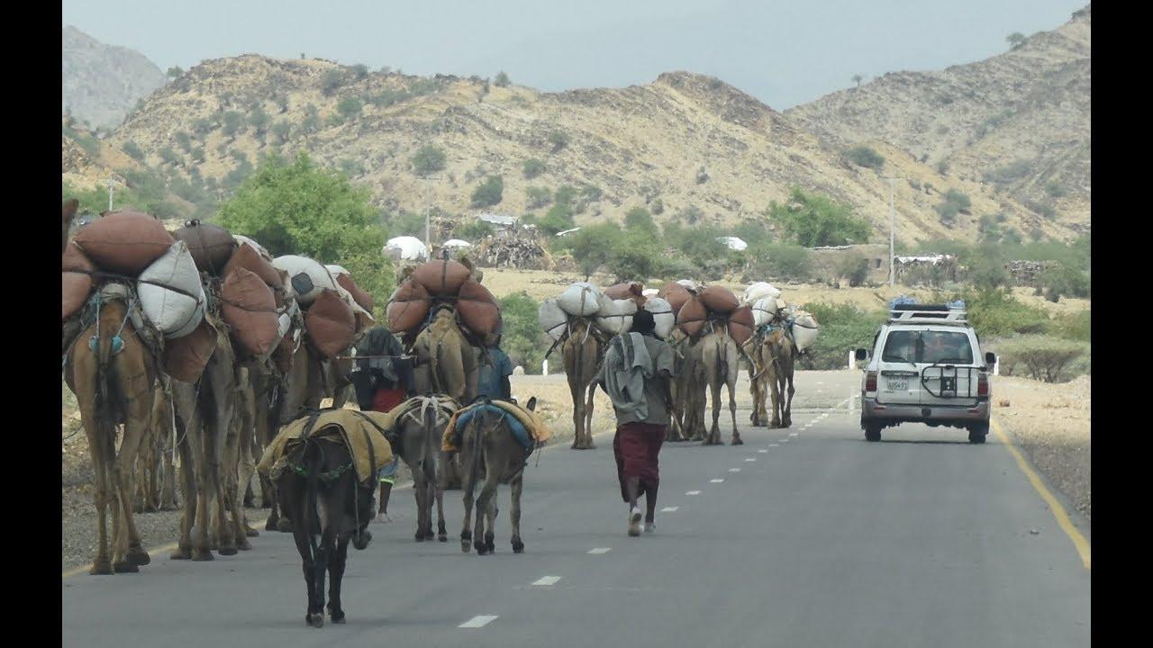 Geoffs Highway View :  Mekele to Berhale camp     Ethiopia
