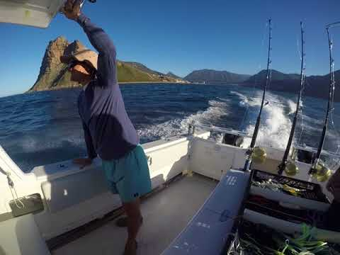 Cape Town - Deep Sea Fishing