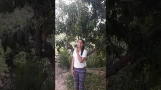 Demet akalın & ömer topçu - oh olsun - işaret dili Video