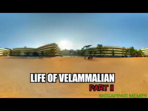 Velammal troll video