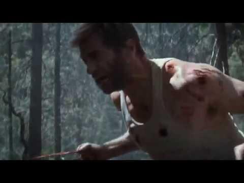Logan Rage Forest Scene Wolverine