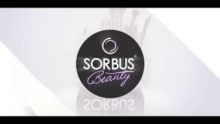 Sorbus Beauty: Large Cosmetic Makeup Organizers