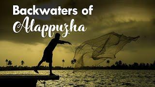 Alappuzha Backwaters Fishing Nets