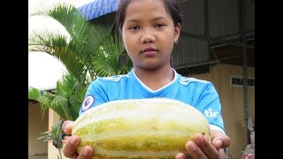 How to take cucumber ripe with water frozen   Village Food Factory