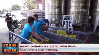 Şarköy bağlarının lezzetli üzüm suları