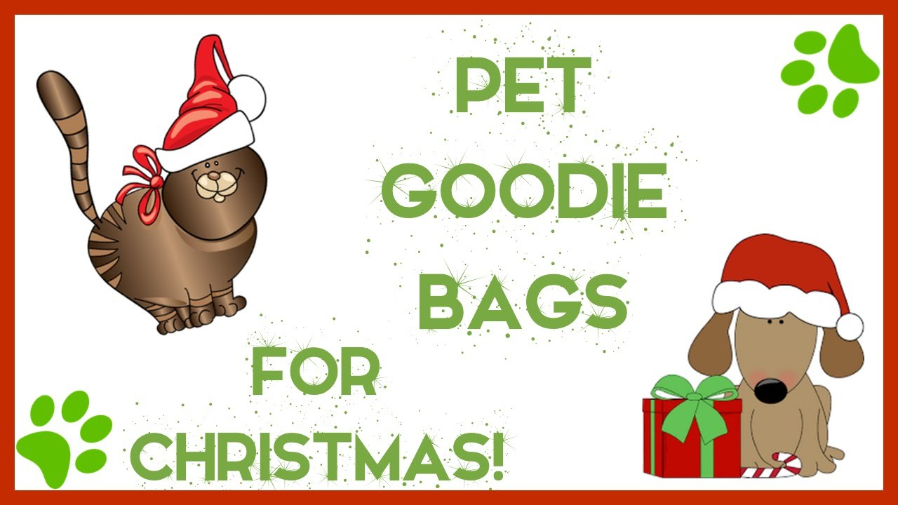 Pet Goodie Bags for Christmas | Cat & Dog Gifts! - YouTube