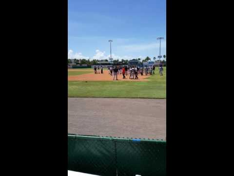 Cincinnati Reds minor league fight
