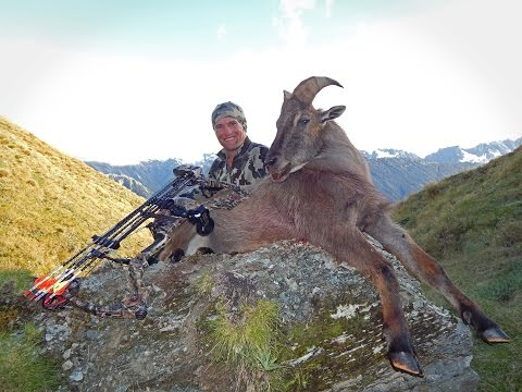 NZ Bow Hunting- Tahr Hunt