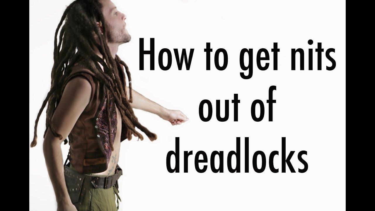 How To Get Rid Of Head Lice From Dreadlocks Kills Nits