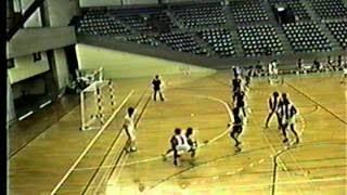 1995年関東学生ハンドボールリーグ 明治大vs法政大