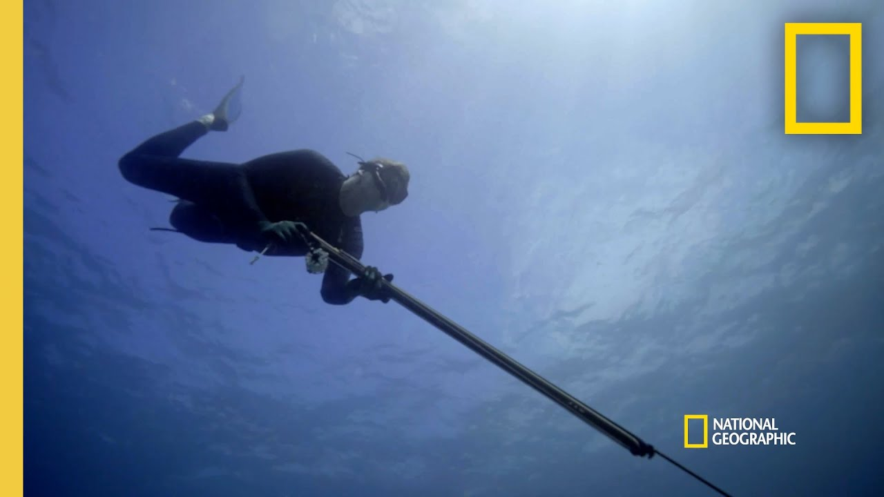 Gordon Goes Spearfishing for Snapper | Gordon Ramsay: Uncharted