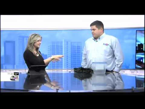 Holiday Pest Proofing| Birmingham, AL| Stark Exterminators