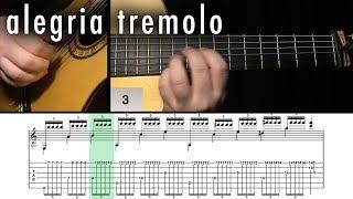 Flamenco Guitar 102 - 26 Alegria Tremolo