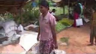Best of Sri lanka Video - Dikwella Market