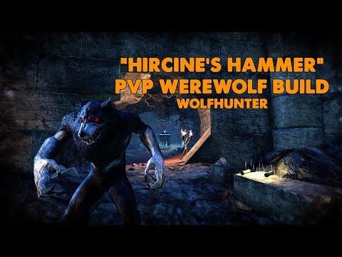 ESO - Hircine's Hammer PVP Werewolf Build - (Wolfhunter)