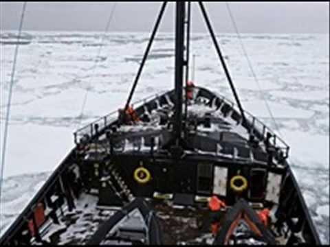 Sea Shepherd has lost the trail of the Japanese fleet after encountering heavy ice conditions