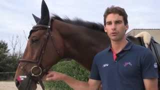 Travaillez les déplacements latéraux avec votre cheval
