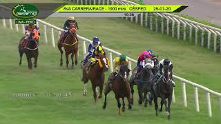 Vidéo de la course PMU PREMIO HANDICAP - OPEN (INTERNET)