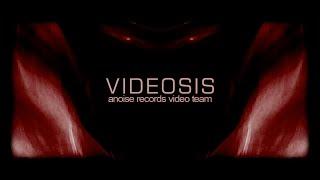 Videosis