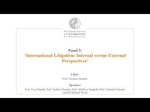 International Law and Litigation - 3 - Internal versus External Perspectives