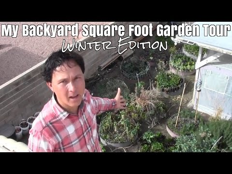 My Backyard Square Foot Garden Tour - Winter Edition