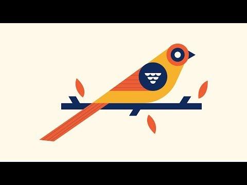 Bird Illustration - Illustrator tutorial thumbnail