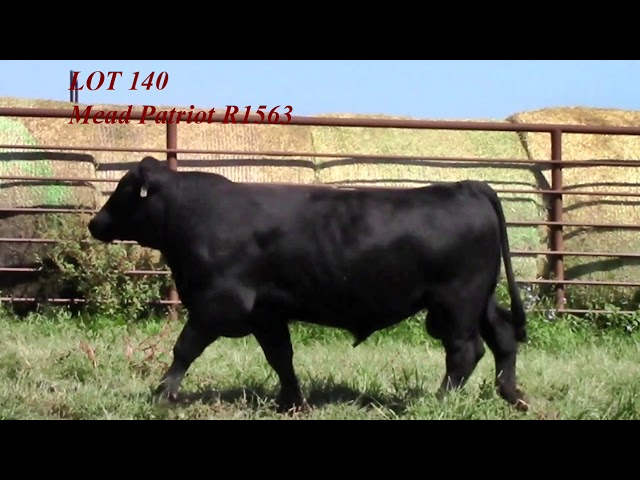 Mead Angus Lot 140