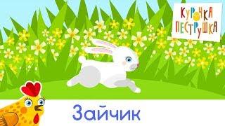 Зайчик - КУРОЧКА-ПЕСТРУШКА Песенки мультики про животных для детей малышей