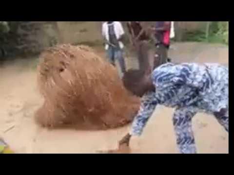 Zangbeto, magia bruxaria real, materialização, Benim, Togo, Senegal,