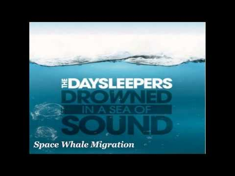 The Daysleepers - Drowned In A Sea Of Sound (Full Album)