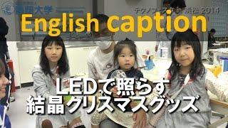 LEDで照らす結晶クリスマスグッズ テクノフェスタ 2014 - 静岡大学