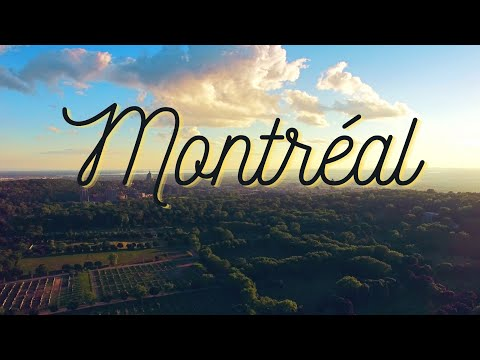 Montréal Through the Eyes of Tourists (Collage Film)