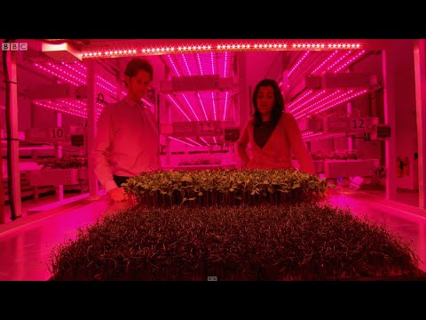 .LED 植物照明戰場,國際巨頭押寶哪些產品?