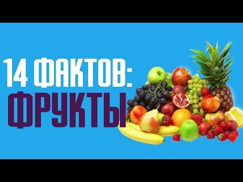 Каталог фруктов Опасные и полезные свойства фруктов