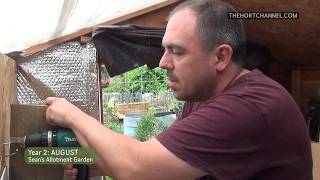 Sean's Allotment Garden Derby Lane 207: New cupboard and sowings (August)