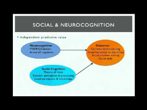 6ème colloque de l'AFRC : Cognitions, functioning and quality of life in schizophrenia
