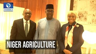 CBN To Provide Funding For Rice & Cassava Production