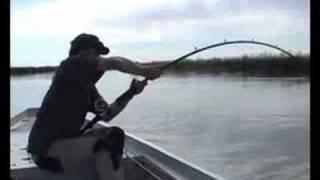 Невероятная рыбалка(Рыбалка. Сом., 2008-09-05T09:13:32.000Z)