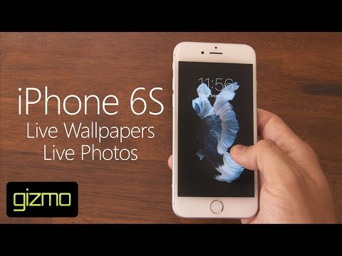 iPhone 6S - Live Wallpapers & Photos