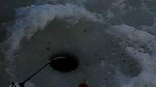 Рязань, Солотча, рыбалка 24/02/2008.