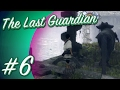 The Last Guardian  6   Heights