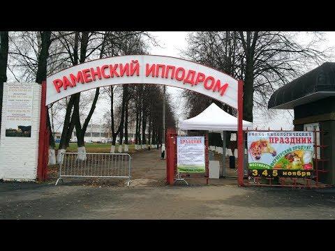 """Раменское. Фестиваль """"Фермерский продукт""""."""