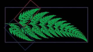 A Fractal Journey Into the Infinite: The Barnsley Fern