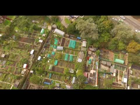 Dave's Allotment. Autumn Jobs, Apples, Drone & Thank You Giveaway Comp.