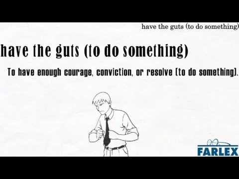 have the guts (to do something)