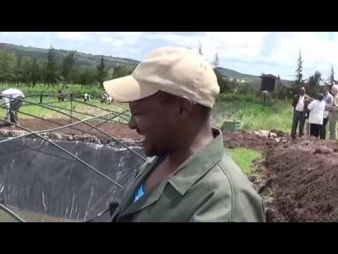 Menora Greens Farm-Laikipia County
