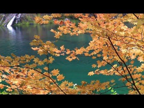 Autumn Color - Previews - Willamette National Forest (Oregon) Oct 2013